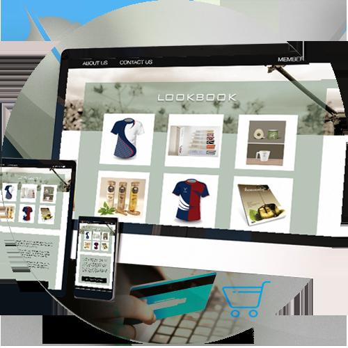 CMS and Wordpress Website Design by iGeekTeam