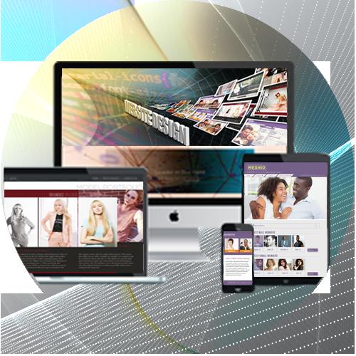 Responsive Website Design by iGeekTeam